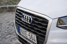 Audi single frame